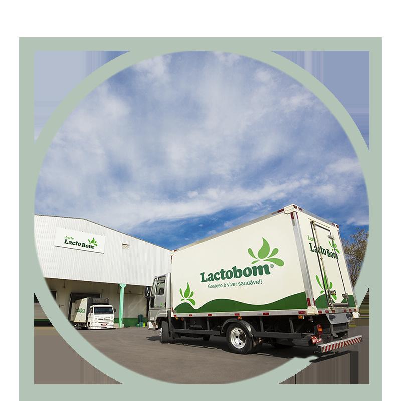 Logística estruturada facilita o transporte do leite